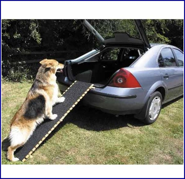Pet Ramps For Dogs
