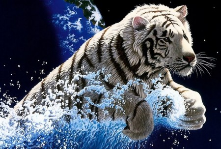 Pics Of Tigers With Blue Eyes