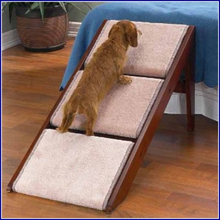 Ramps For Dogs Over Stairs