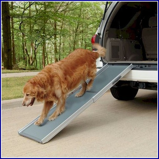 Ramps For Dogs With Arthritis