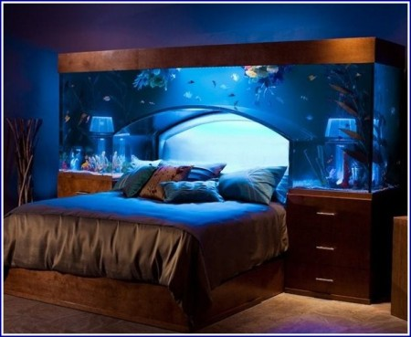 Saltwater Fish Tank Decorations