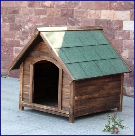 Small Dog Crates Petsmart