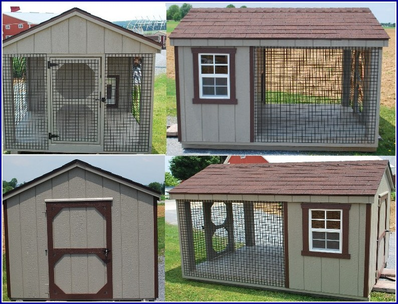 Small Dog Kennel Buildings