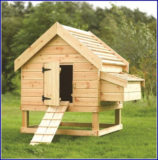 Small Dog Kennel Ideas