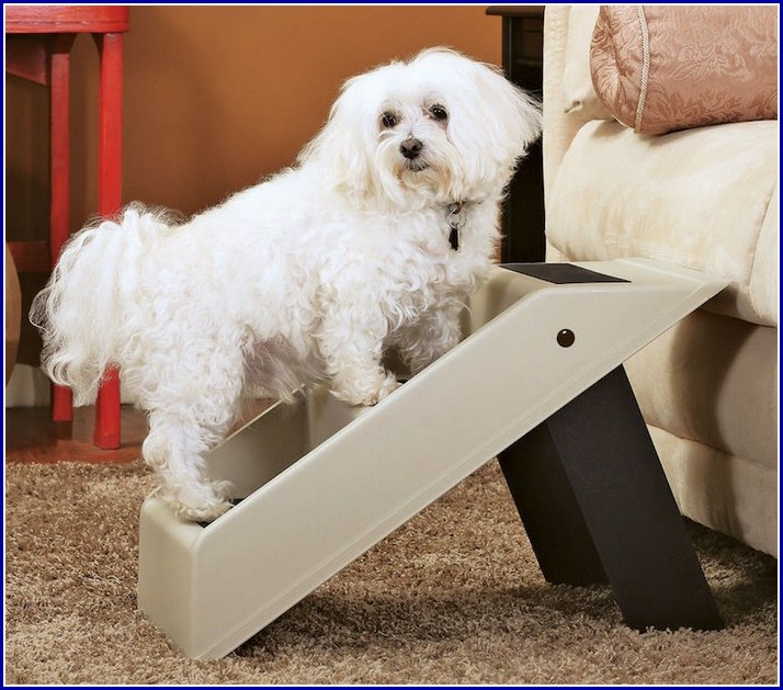 Stair Ramps For Dogs