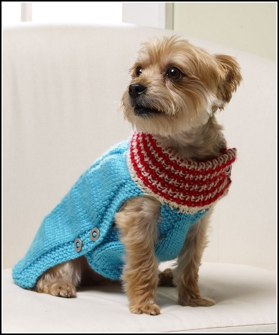Sweaters For Dogs Knitting Pattern