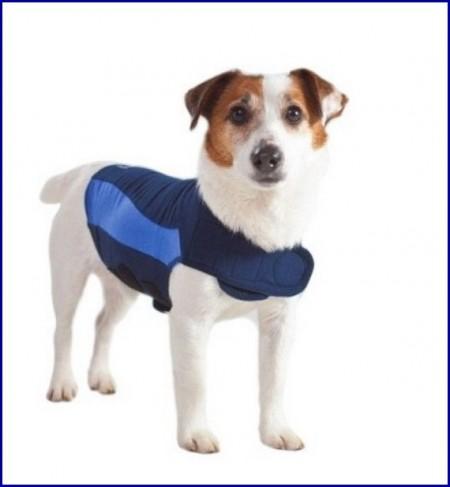 Thunder Shirts For Dogs Petsmart