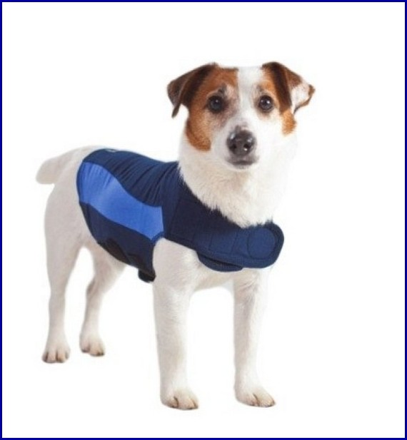 Thunder Shirts For Dogs Petsmart