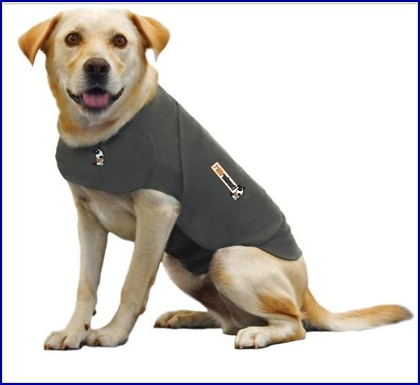 Thunder Shirts For Dogs Uk