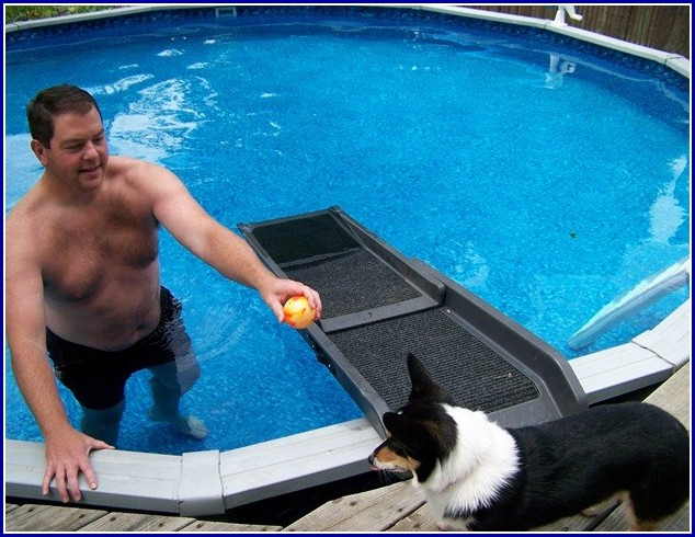 Water Ramps For Dogs