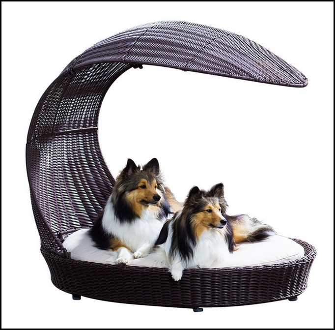 Wicker Dog Bed Australia