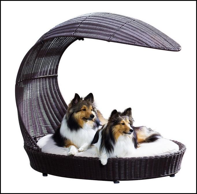 Wicker Dog Bed Australia