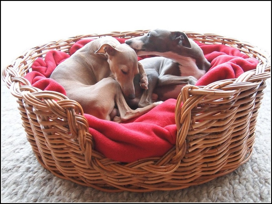 Wicker Dog Bed Baskets