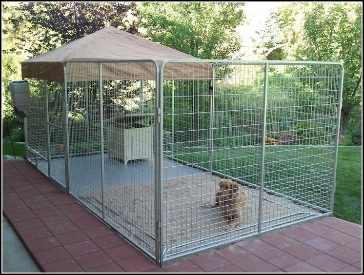 Wire Fencing For Dogs