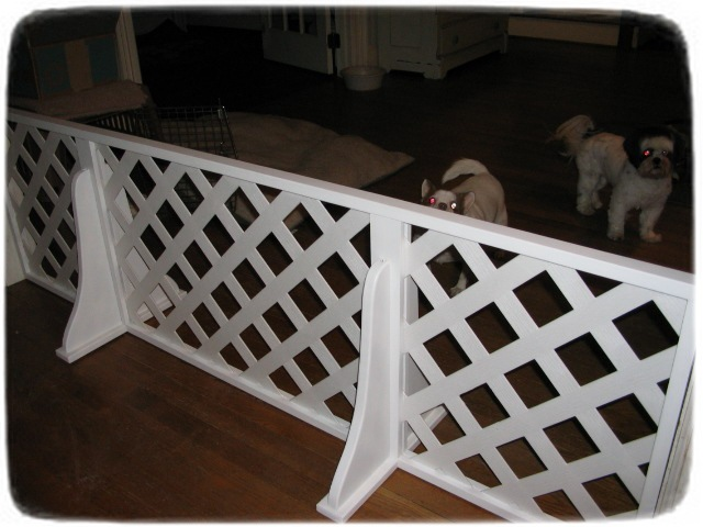 Wireless Pet Fence For Small Dogs
