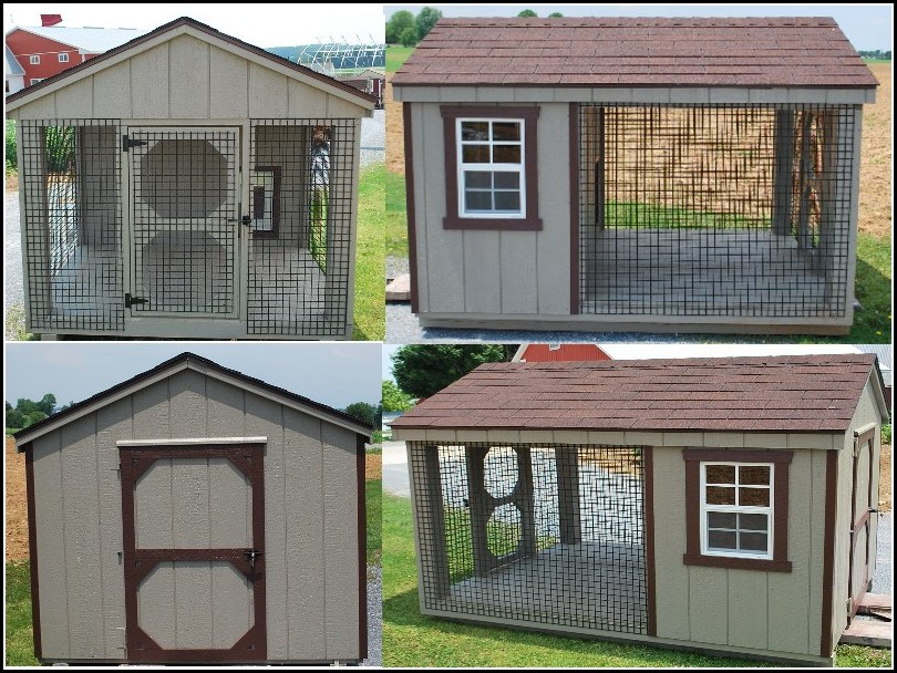 Cool Big Dog Houses
