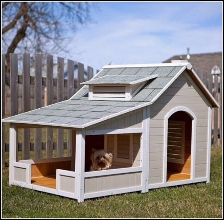 Pics Of Big Dog Houses