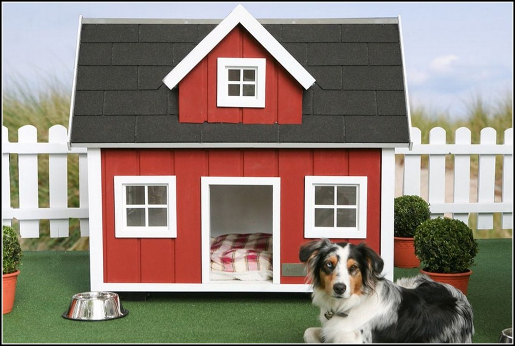Pictures Of A Dog House