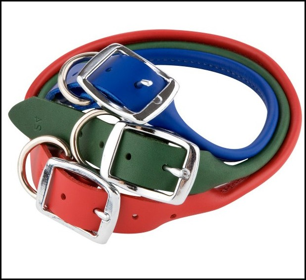 Rolled Nylon Dog Collars