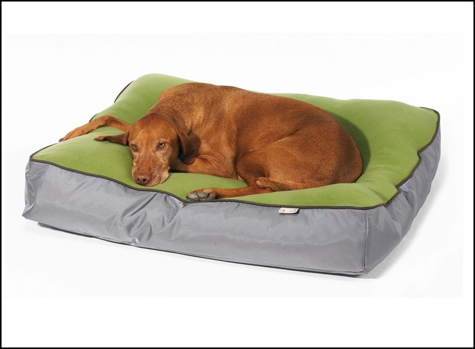 Bowser Dog Beds Uk