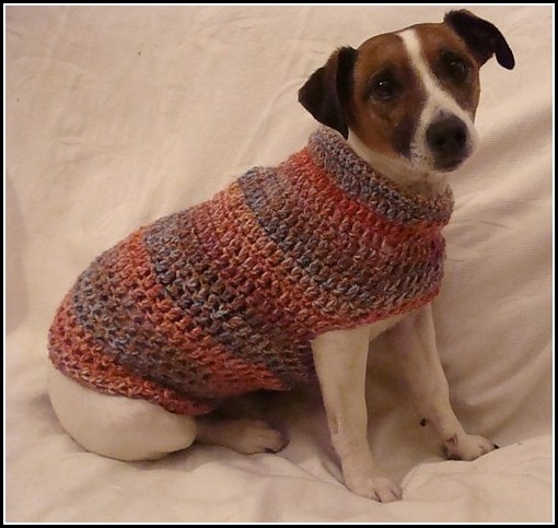 Small Dog Sweaters To Crochet
