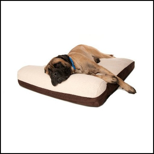 Bolster Dog Beds Memory Foam