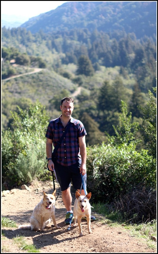 Hiking With Dogs In Big Sur