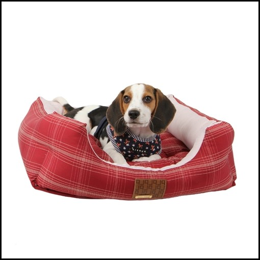 Modern Dog Beds Australia