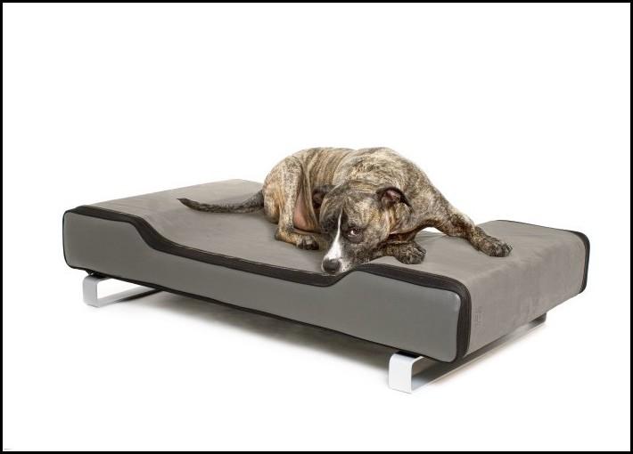 Modern Dog Beds Canada