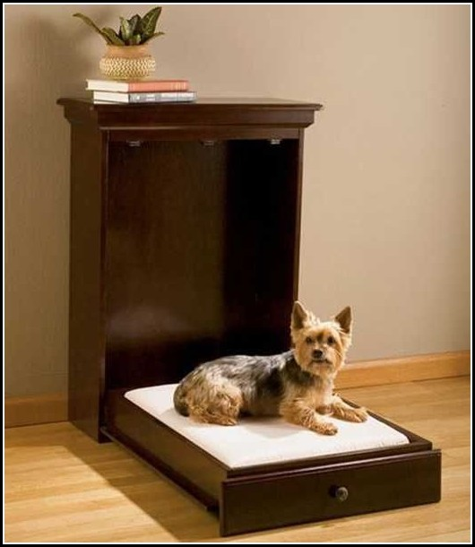 Modern Dog Beds Design