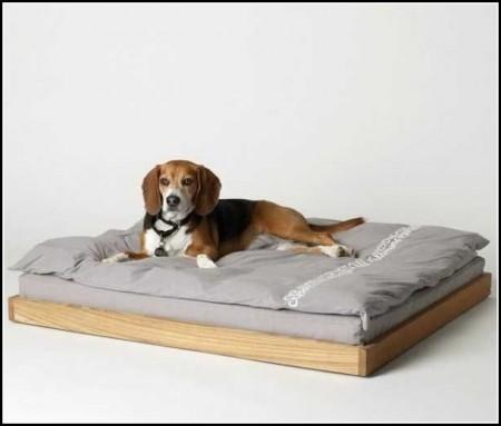 Modern Dog Beds Furniture