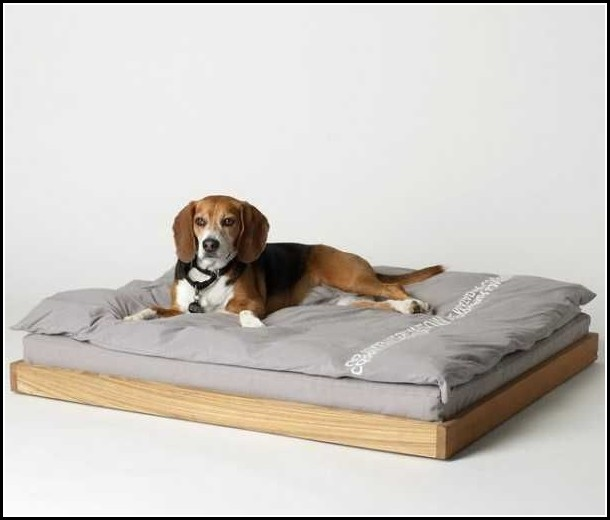 Modern Dog Beds Furniture