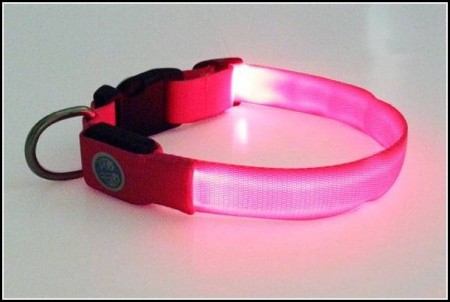 Dog Collar Light Up