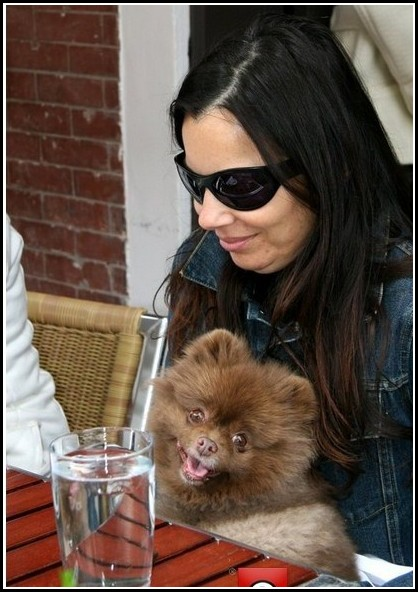 Fran Drescher Dog Esther Breed