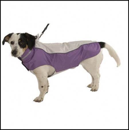 Dog Bathing Suits For Large Dogs