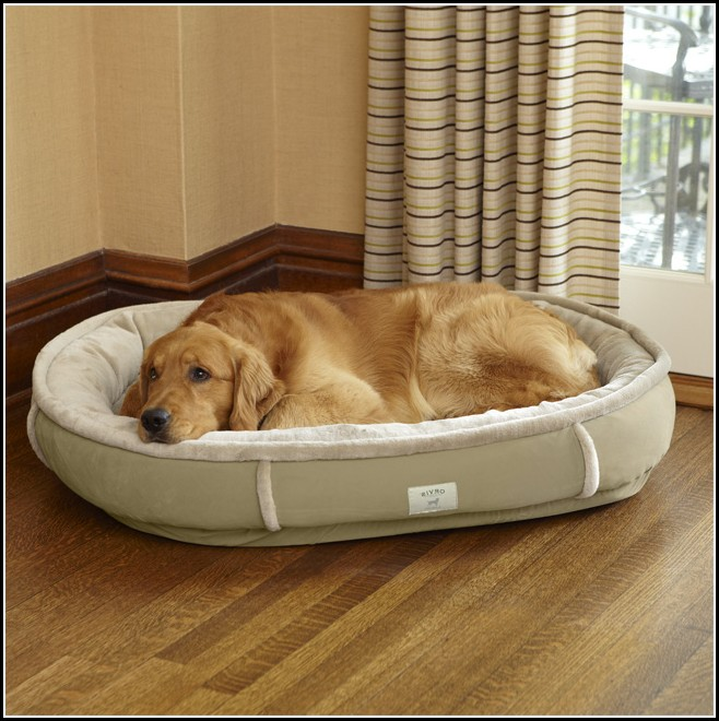 Dog Beds Uk