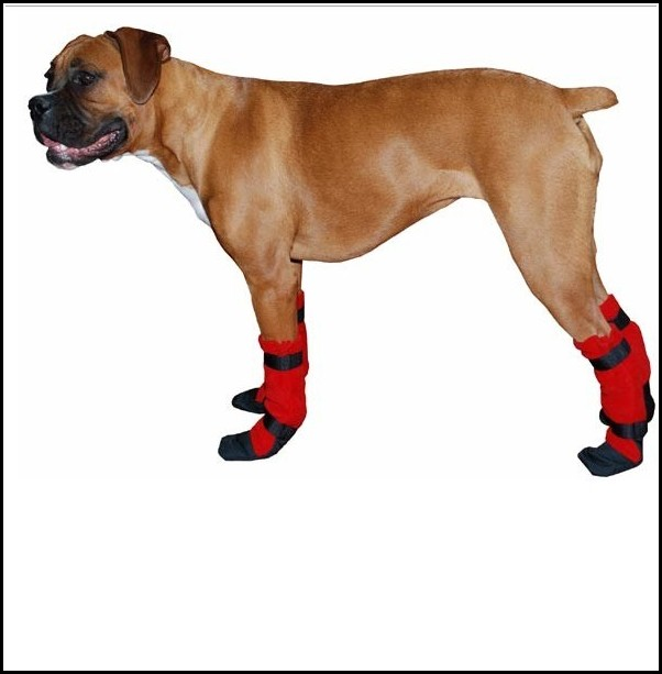Dog Booties Pattern