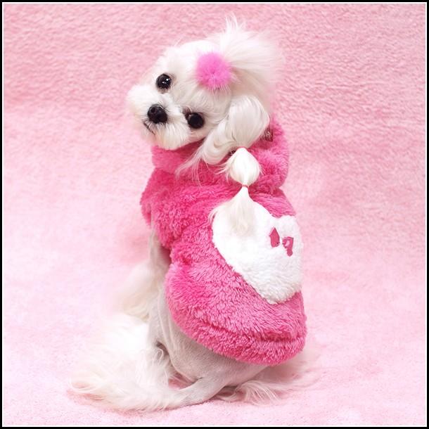 Dog Coats With Hoods