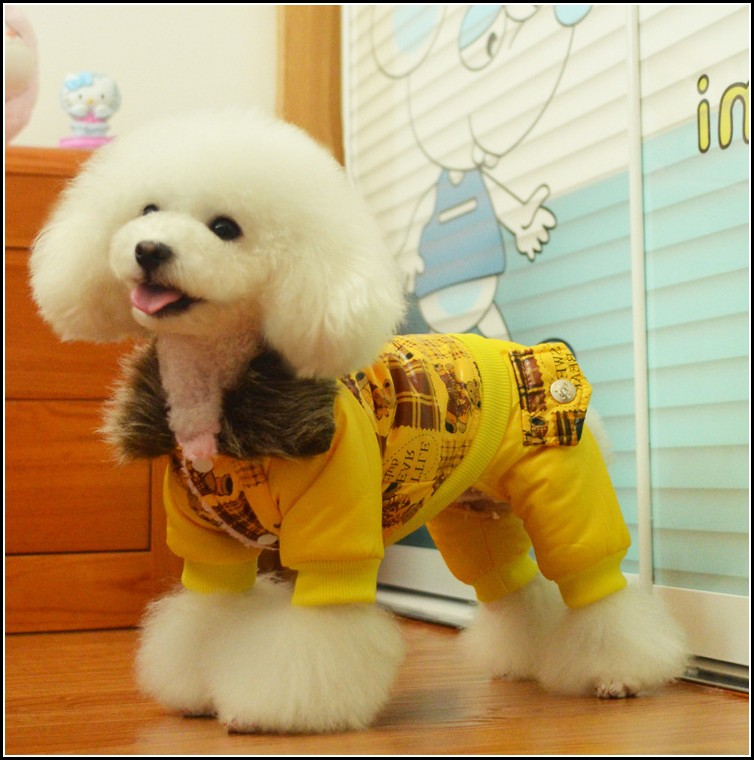 Dog Coats With Legs