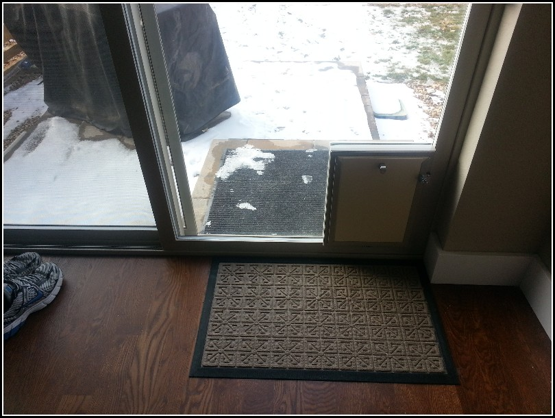Dog Door In Glass Door