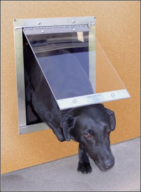 Dog Doors For Glass Doors