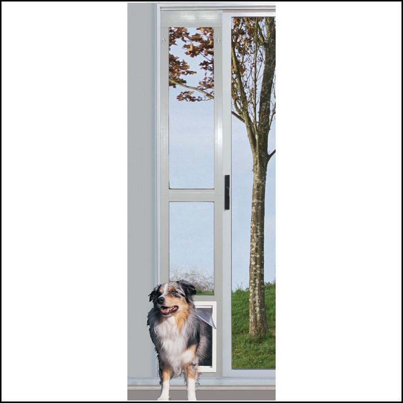 Dog Doors For Sliders