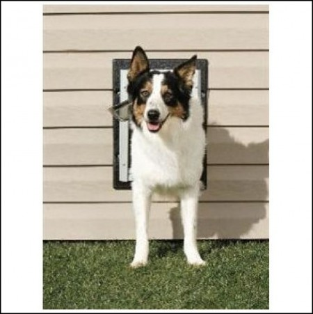 Dog Doors For Walls Home Depot
