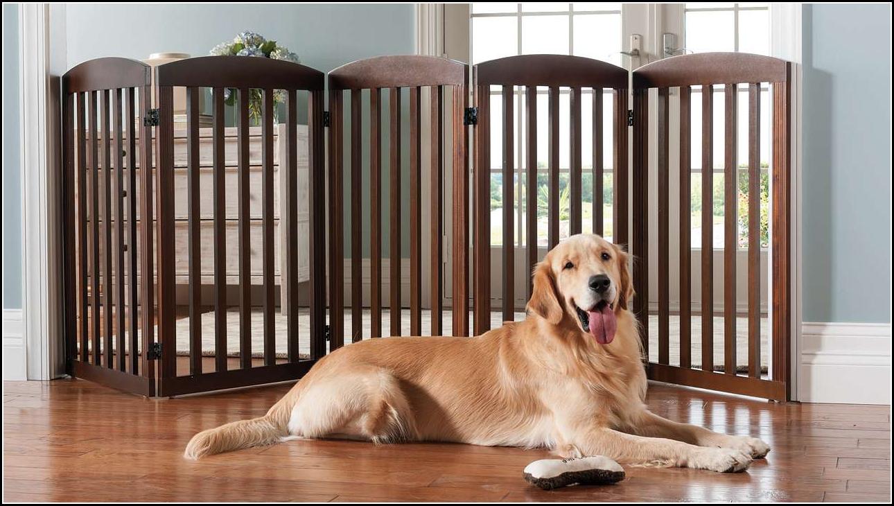 Dog Gate Diy