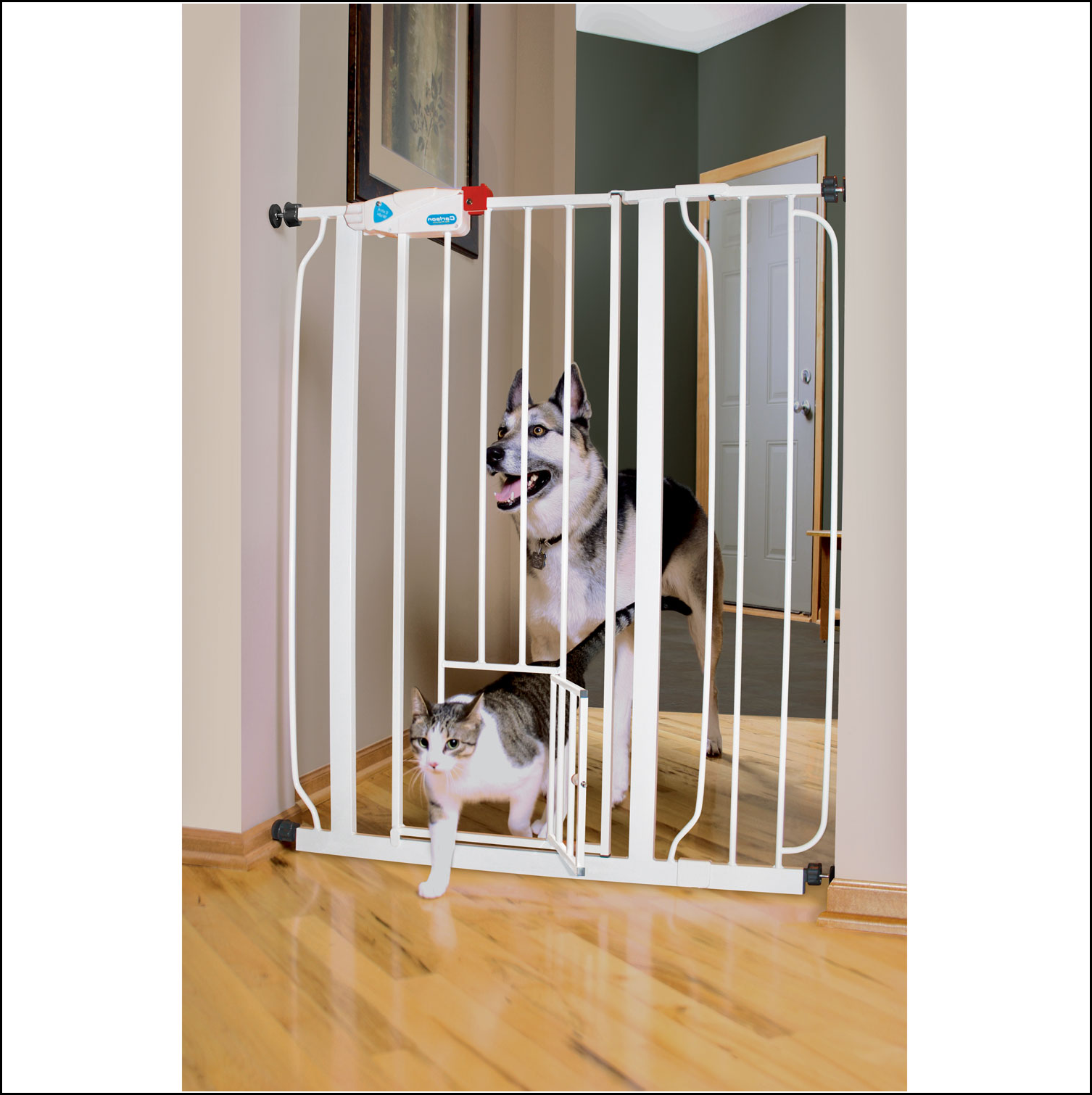Dog Gate With Cat Door