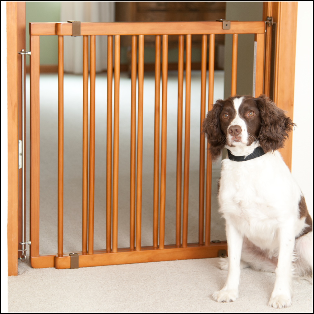 Dog Gates For Home