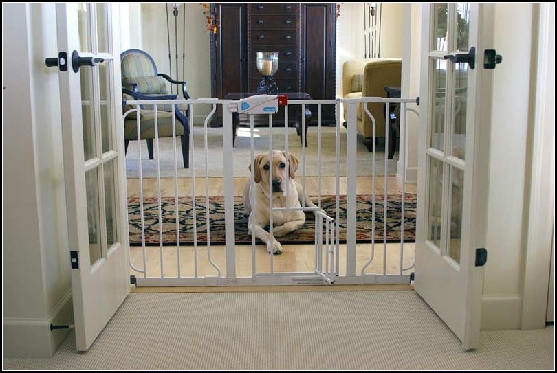 Dog Gates For Small Dogs