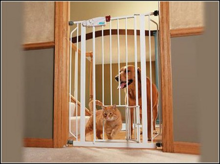 Dog Gates Indoor