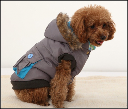 Dog Jackets For Winter