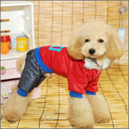 Dog Jackets With Legs